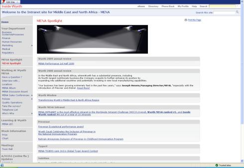 MENA Home page_small